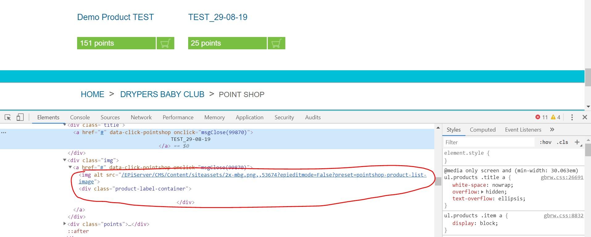 EPiServer assets URL's not loading properly   Episerver