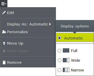 The display option available for selection in the user interface.